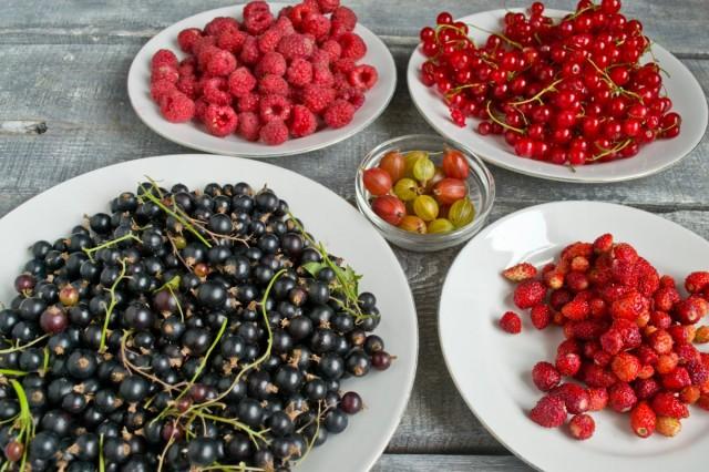 Ассорти из садовых ягод для варенья