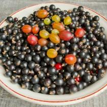 Добавляем крыжовник и смородину к остальным ягодам