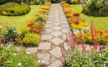 Цветник на солнцепёке — нюансы создания и выбор растений