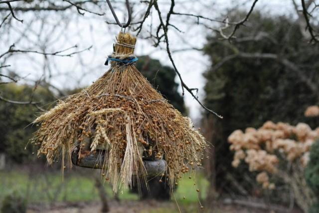 Никто лучше птиц не обнаружит и не уничтожит спрятавшегося в укромном месте вредителя - привлекайте пернатых в сад!