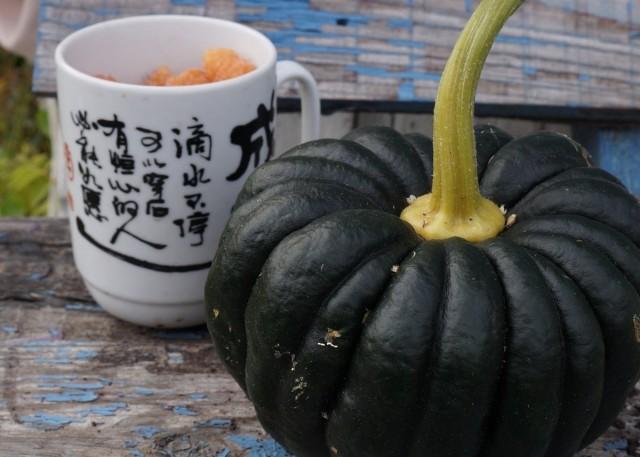 Сорт тыквы группы «Йокогама»