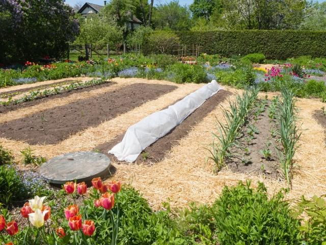 Основная функция углублённых грядок – спасение почвы от перегрева и удержание влаги