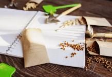 6 правил стратификации семян в домашних условиях