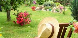 Я — «ленивый» садовник, и мне это нравится!