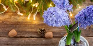 Простые идеи украшения интерьера к Новому году