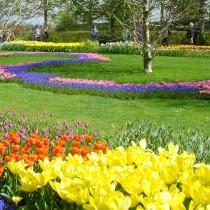 Кёкенхоф известен еще под названием «Сад Европы»