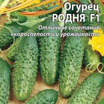 Огурец «Родня» — высокоурожайный, с длительным плодоношением и отличными вкусовыми качествами!