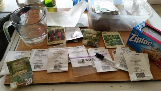 Проверка семян на всхожесть позволит понять, достаточно ли семян или нужно купить еще