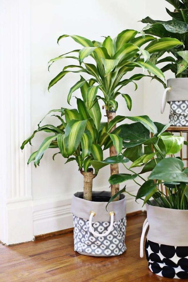 Текстильные кашпо для домашних растений