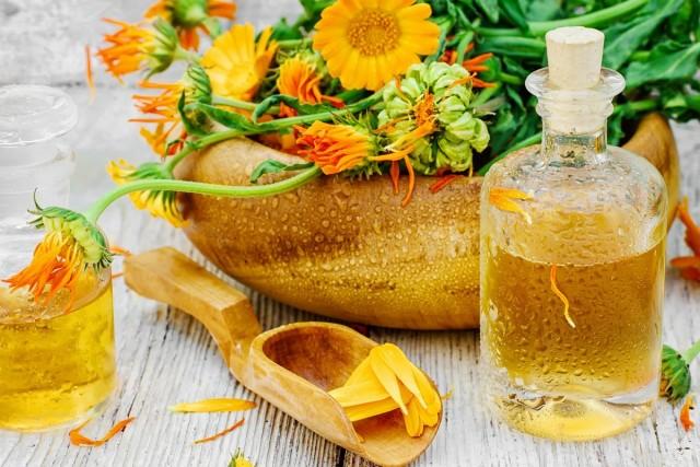 Календула лекарственная еще в глубокой древности использовалась и в медицине, и в кулинарии