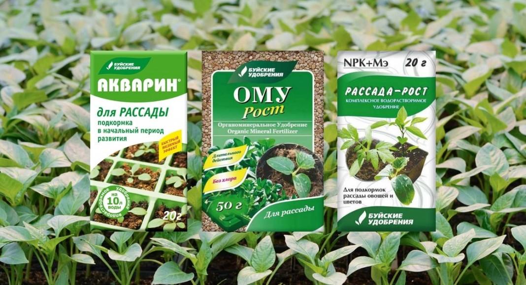 Недостаток комплекса элементов приведет к слабому развитию растений