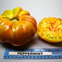 Томат «Пепеминт» (Peppermint)