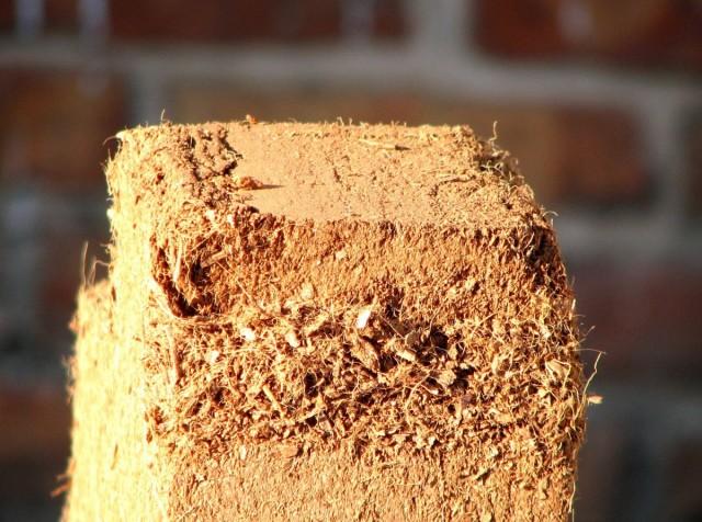 Кокосовый субстрат — преимущества и недостатки использования