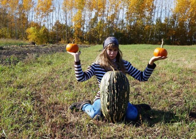 По иронии судьбы нам так и не удалось попробовать этот гигантский плод тыквы «Чудо-Юдо»