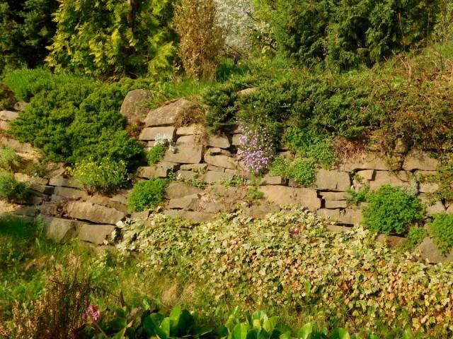Сухие подпорные стенки пропускают воду и воздух, позволяют свободно развиваться растениям