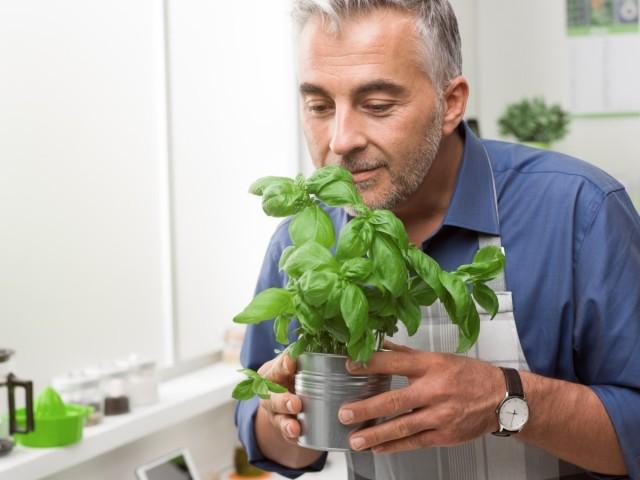 Большинство зелени и овощей можно вполне успешно вырастить на городском балконе, лоджии или кухонном подоконнике