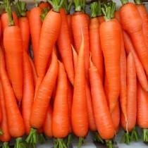 Морковь «Оранжевый мускат»
