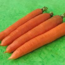 Морковь «Олимпус»
