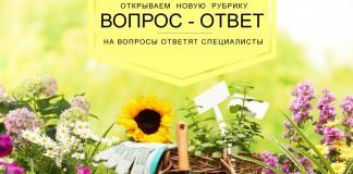 «Вопрос-ответ» — новая рубрика об удобрениях Буйского завода