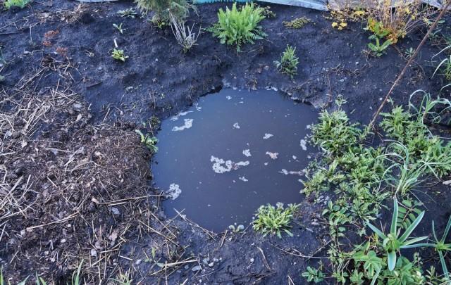 Эта глубокая яма метр в диаметре и глубиной около метра помогла спасти от гибели растения в миксбордере