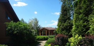 Весенняя защита садовых растений от вредителей и заболеваний