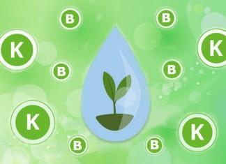 Метаборат калия — современная альтернатива борной кислоте
