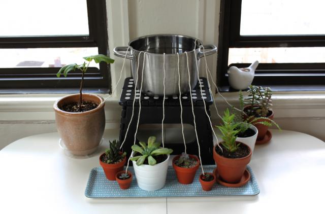 Один из самых надежных методов организации полива растений в отъезде
