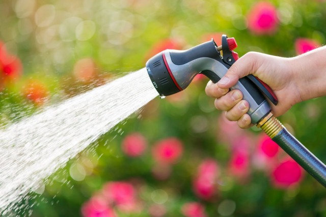 Как выбрать садовый шланг, который не доставит проблем