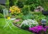 Цветник — правильно ухаживаем и защищаем от болезней и вредителей