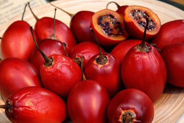 Плоды тамарилло достаточно плохо сохраняются и лишь относительно транспортабельны