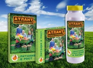 Подарите растениям силу Атланта