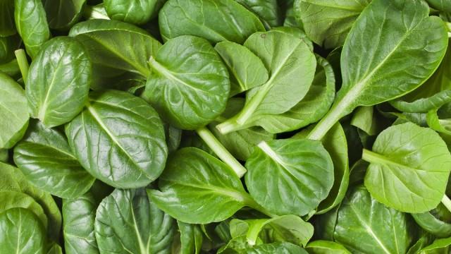 Особенно склонна к накоплению нитратов вся весенняя зелень: салат, шпинат, щавель и др.