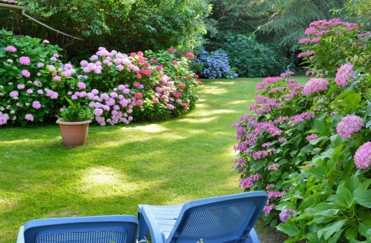 6 главных правил малоуходного сада от ландшафтного дизайнера