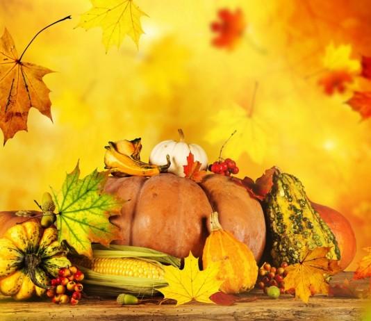 Про удобрения осенние — «Осень» и ОМУ «Осеннее»