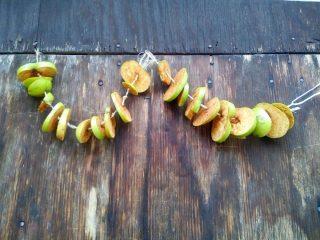 Я вешаю вязанки с яблоками на веранде, в тени на небольшом сквозняке