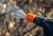 Осенние искореняющие опрыскивания сада — нужны или не очень?