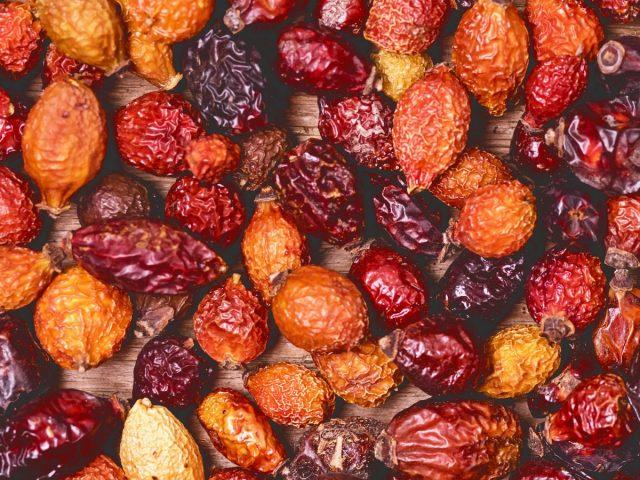Хорошо высушенные плоды шиповника должны быть твердыми, немного сморщенными, блестящими