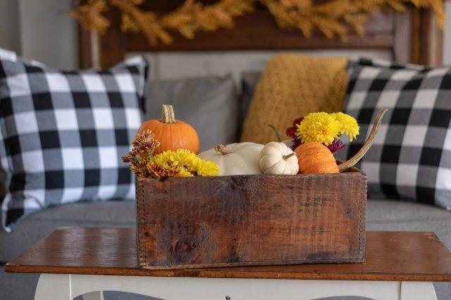 Осенние композиции из тыкв добавят элегантность и дому, и саду