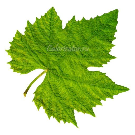grape-leaves-1
