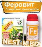 Феровит – стимулятор фотосинтеза и дыхания растени