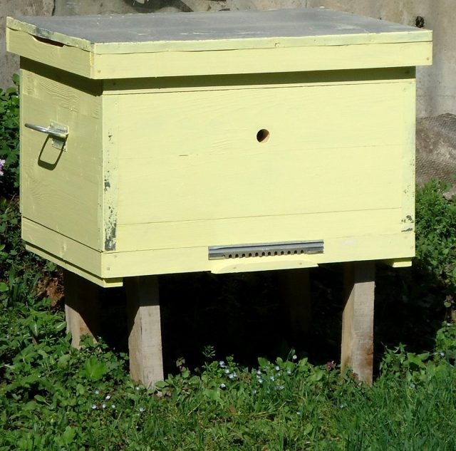 Улей-лежак ждёт пчёл