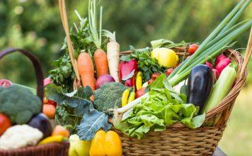 Посевной календарь овощей на рассаду 2020