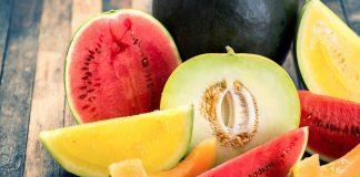 Прививка арбузов и дынь на лагенарию — решение для холодного климата