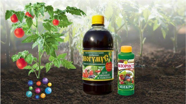 Важно вначале дать культурам органическое питание с комплексом макро и микроэлементов