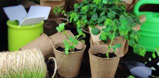 Простые и надежные способы маркировки посевовПростые и надежные способы маркировки посевов