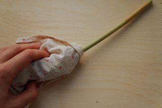 Для обмолота сорго метелку помещаем в тканевый мешочек и разминаем руками