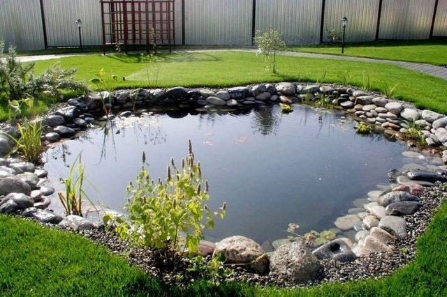 Площадь дачного пруда для разведения рыбы должна соответствовать её количеству и видам.