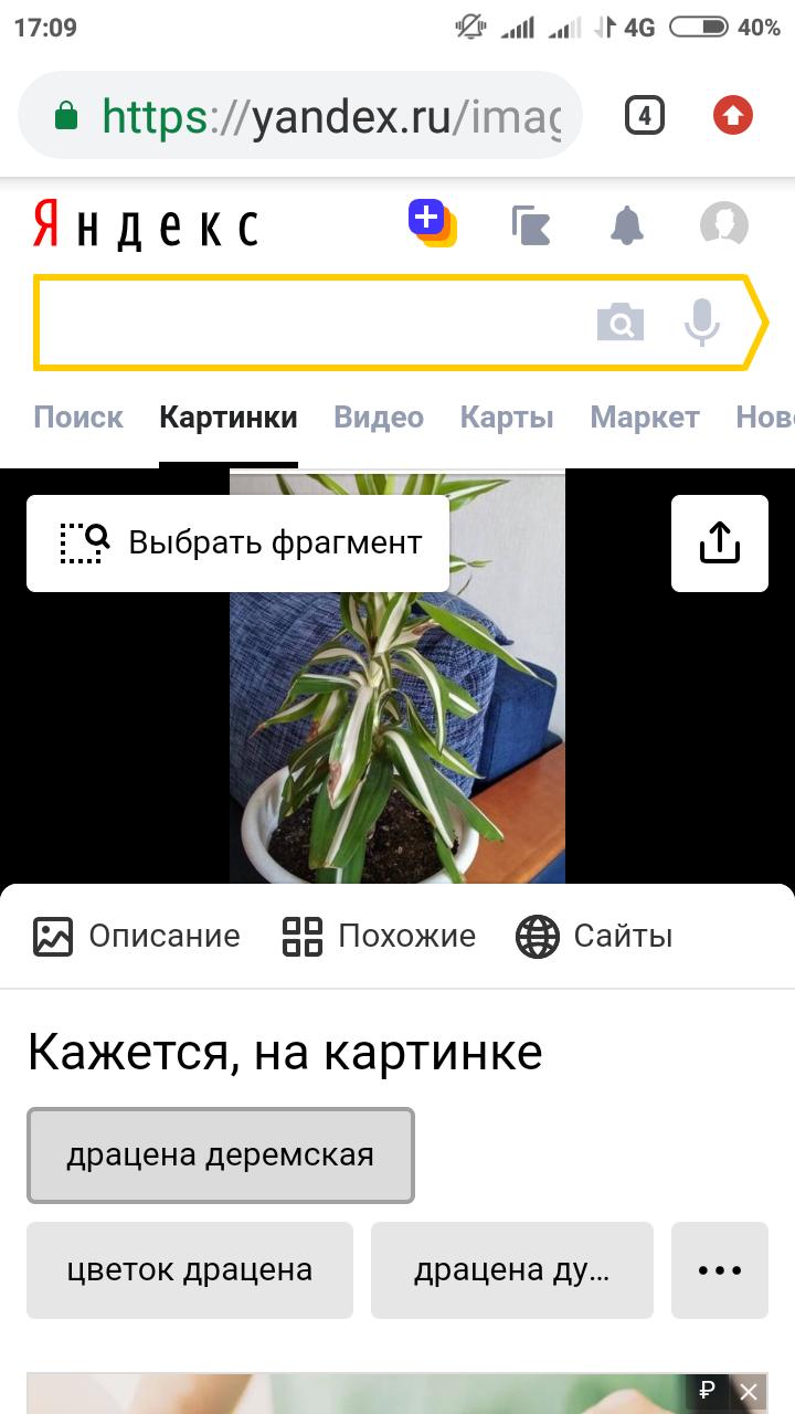 Screenshot_2020-04-18-17-09-10-755_com.android.chrome