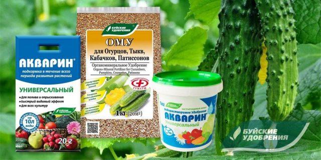 Набор удобрений для хорошего урожая огурцов