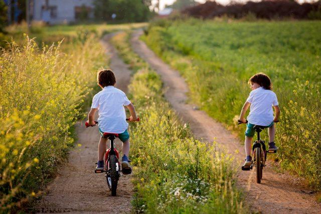 Для поддержания иммунной системы детей полезно отправить на лето в деревню